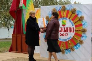 Районный фестиваль-праздник тружеников села Дожинки-2017